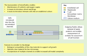 Organ-on-chip-applications-in-drug-discovery